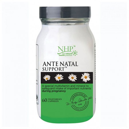 Ante Natal Support NHP